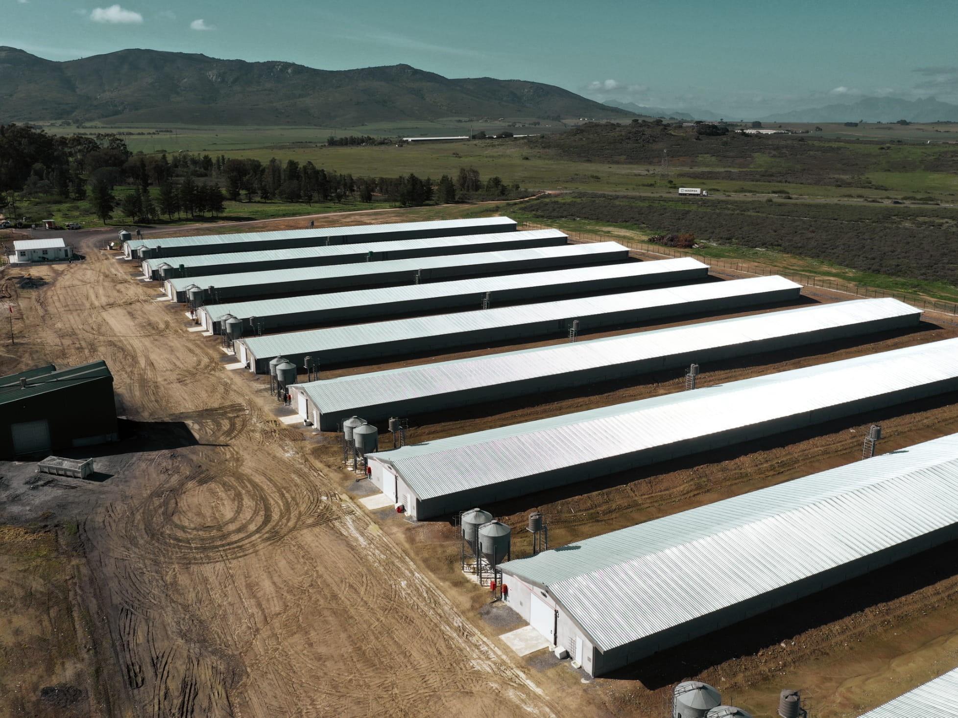 New Van Zyl Broiler Farm